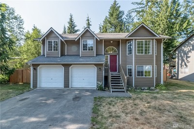 Maple Falls Single Family Home Sold: 2981 Green Valley Dr
