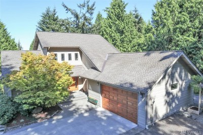 Port Ludlow Single Family Home For Sale: 33 Twinsview Ct