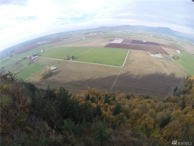 Sumas Residential Lots & Land Contingent: Reese Hill Rd