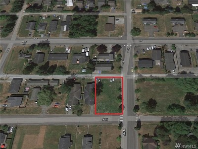 Blaine Residential Lots & Land For Sale: 590 E St