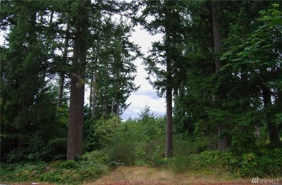 Port Ludlow Residential Lots & Land For Sale: Thorndyke Rd