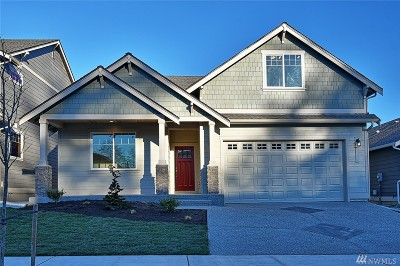 Stanwood Single Family Home For Sale: 27723 66th Dr NW