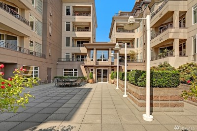 Kirkland Condo/Townhouse For Sale: 225 4th Ave #B203