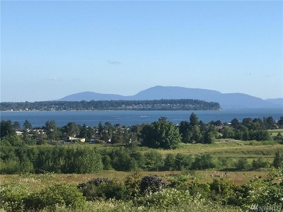 Blaine Residential Lots & Land For Sale: 8497 Semiahmoo Parkway