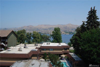 Chelan Condo/Townhouse For Sale: 2220 W Woodin Ave #311