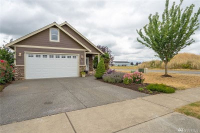 Lynden Single Family Home For Sale: 2181 Mercedes Dr
