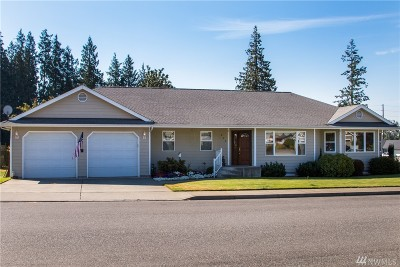 Lynden Single Family Home For Sale: 800 Bender Place