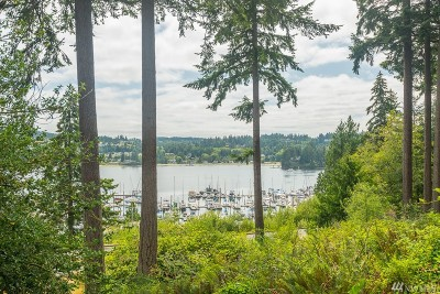 Port Ludlow Single Family Home For Sale: 40 Phinney Lane