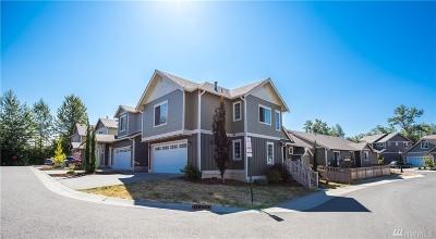Single Family Home For Sale: 713 Verbena Lane