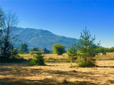 Deming Residential Lots & Land For Sale: 6440 Mt. Baker Hwy