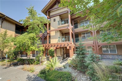 Issaquah Condo/Townhouse For Sale: 1000 Cabin Creek Lane SW #D307