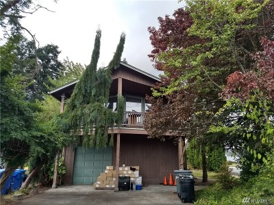 Buckley Single Family Home For Sale: 393 N Norma St