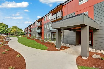 Seattle Condo/Townhouse Sold: 7001 Sand Point Wy NE #C-102
