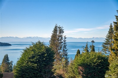Anacortes Single Family Home For Sale: 4163 Islander Wy