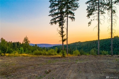 Eatonville Residential Lots & Land For Sale: 13 22nd Ave E