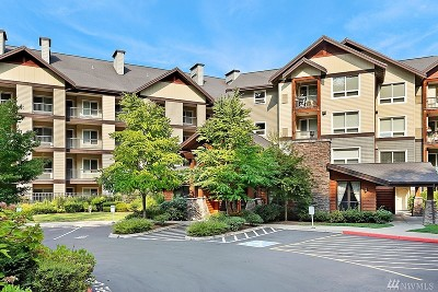 Issaquah Condo/Townhouse For Sale: 18707 SE Newport Way #212