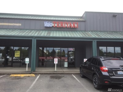 Mason County Business Opportunity For Sale