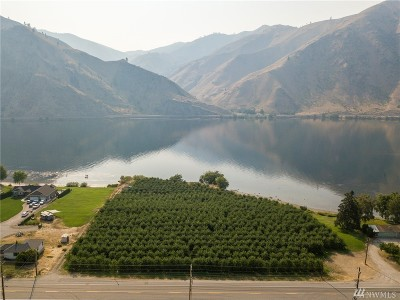 Chelan County, Douglas County Residential Lots & Land For Sale: 21317 Us 97