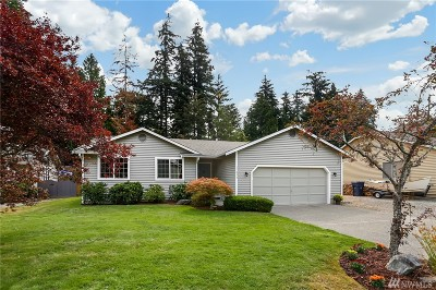 Bothell Single Family Home For Sale: 17825 28th Ave SE