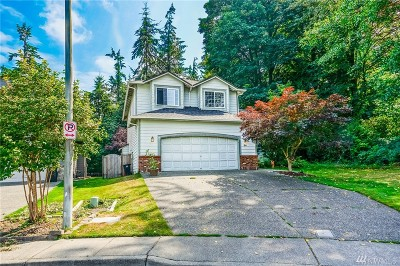 Everett Single Family Home For Sale: 34 Alder St