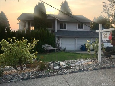 Snohomish Single Family Home For Sale: 410 Ludwig Rd