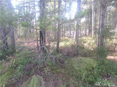 Mason County Residential Lots & Land For Sale: 41 N Varden Wy