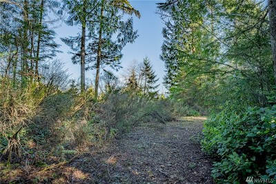 Mason County Residential Lots & Land For Sale: 30 N Jeds Place