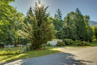 North Bend Single Family Home For Sale: 46025 SE Edgewick Rd
