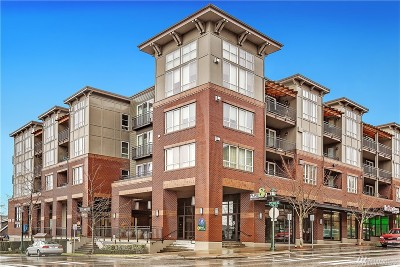 Issaquah Condo/Townhouse For Sale: 1880 25th Ave NE #N215