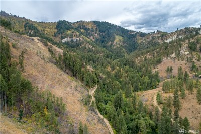 Chelan County, Douglas County Residential Lots & Land For Sale: Brender Canyon Rd