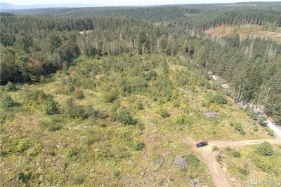 Eatonville Residential Lots & Land For Sale: 2324 403rd St E