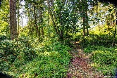 Eatonville Residential Lots & Land For Sale: 110 402nd St Ct E