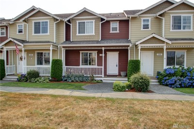 Sedro Woolley Single Family Home For Sale: 336 Helen