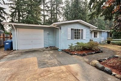 Renton Single Family Home For Sale: 14218 143rd Ave SE