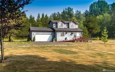 Olympia Single Family Home For Sale: 4743 113th Ave SW