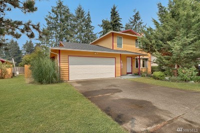 Spanaway Single Family Home For Sale: 2021 165th St Ct E