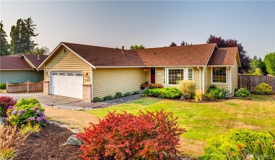 Bellingham Single Family Home For Sale: 1342 McLeod Rd