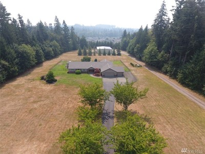 Olympia Single Family Home For Sale: 4225 89th Ave SE