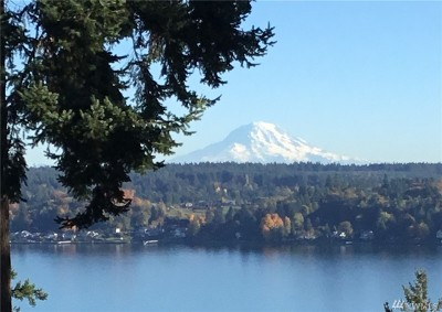 Gig Harbor Single Family Home For Sale: 9616 126th St Ct NW