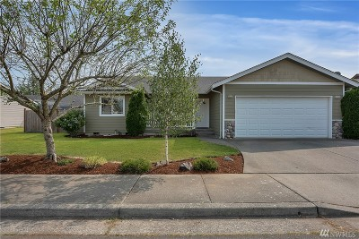 Lynden Single Family Home For Sale: 1902 Buttercup Dr
