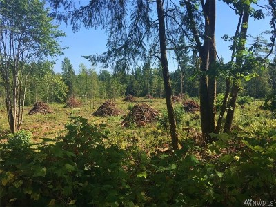 Eatonville Residential Lots & Land For Sale: 10706 400th St E