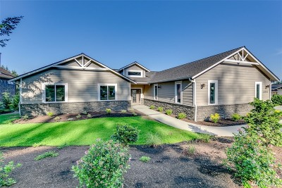 Single Family Home For Sale: 23153 Panorama Place NE