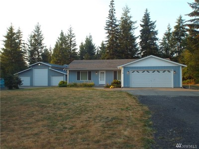Winlock Single Family Home For Sale: 119 Brady Lane
