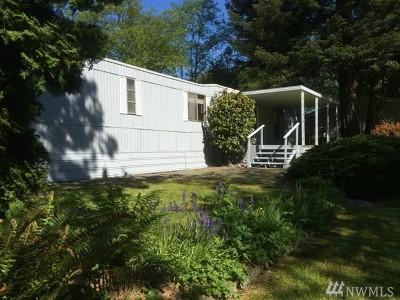 Blaine Single Family Home For Sale: 5778 Salish Rd