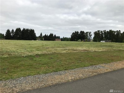 Residential Lots & Land For Sale: 9540 75th Lane SE