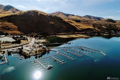 Chelan Condo/Townhouse For Sale: 1350 W Woodin Ave #B1