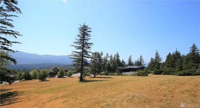 Bellingham Residential Lots & Land For Sale: 4647 Raptor Lane