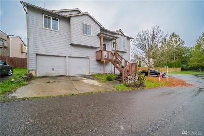 Lake Stevens Single Family Home For Sale: 8412 11th St NE