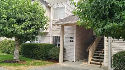Bellingham Condo/Townhouse Contingent: 4232 Wintergreen Cir #161