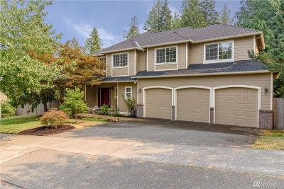 North Bend, Snoqualmie Single Family Home For Sale: 1353 SW 10th St